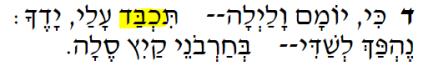 hebrew covid